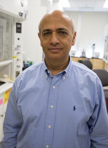 Vijay Sharma, Ph.D.